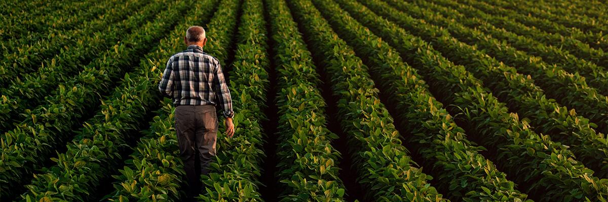 Imagen genérica agricultor